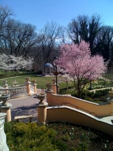 Omni Shoreham Hotel gazebo and garden