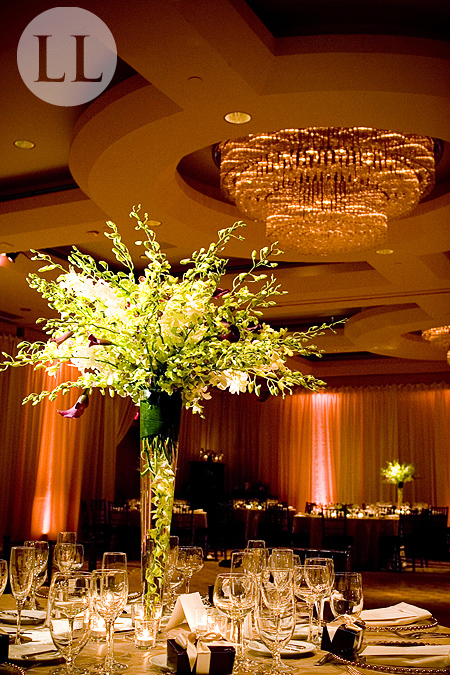 Park Hyatt Washington DC Wedding coodinated by Event Accomplished