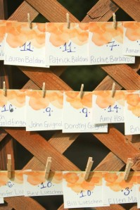 orange escort cards with clothespin on trellis