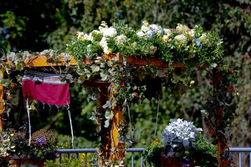 Meadowlark Botanical Gardens Jewish fall wedding chuppah